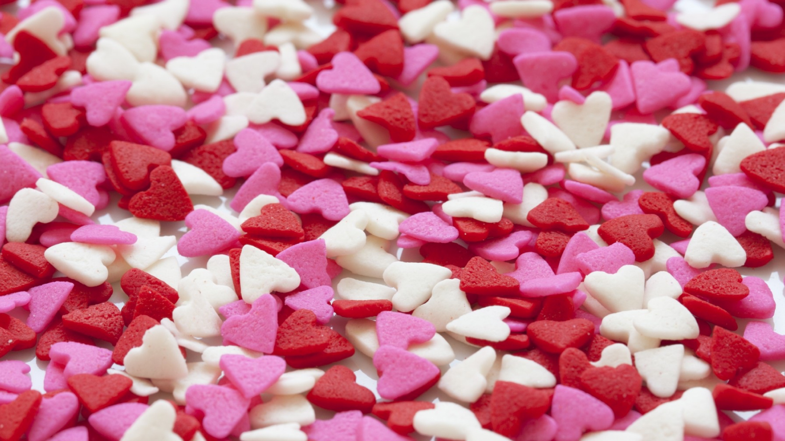 6 valentine s day jobs that help make the day special topresume